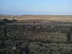 5 hektar torpaq sahəsi , Abşeron r. Bakı