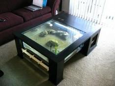 Akvariumlar Bakı
