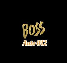 Boss Auto 012